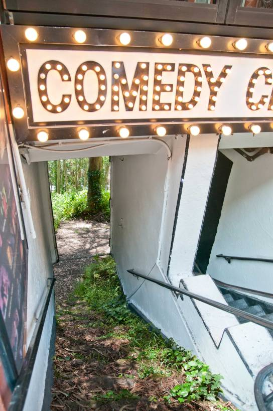 Comedy Cellar forest woods